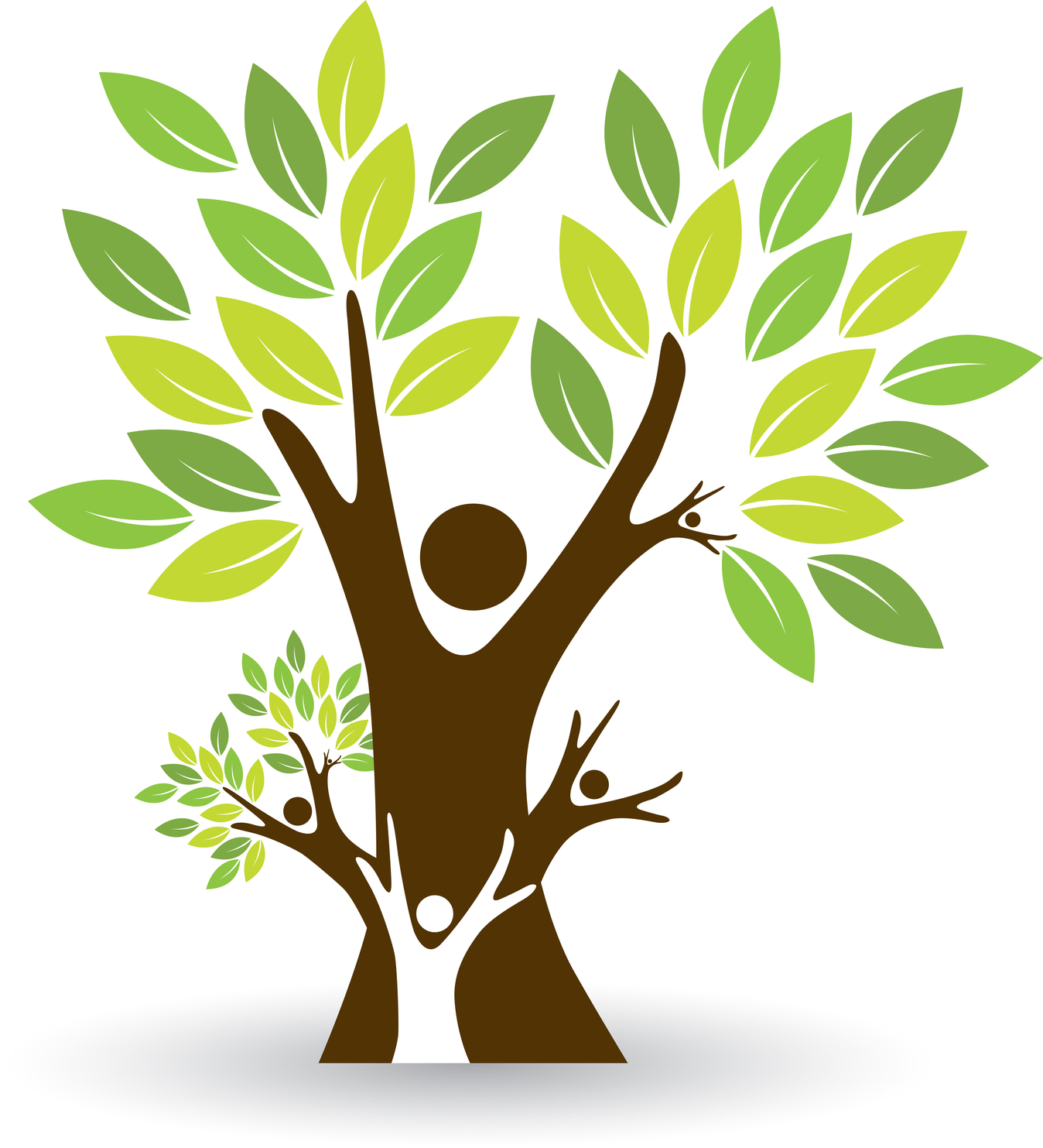 family tree images
